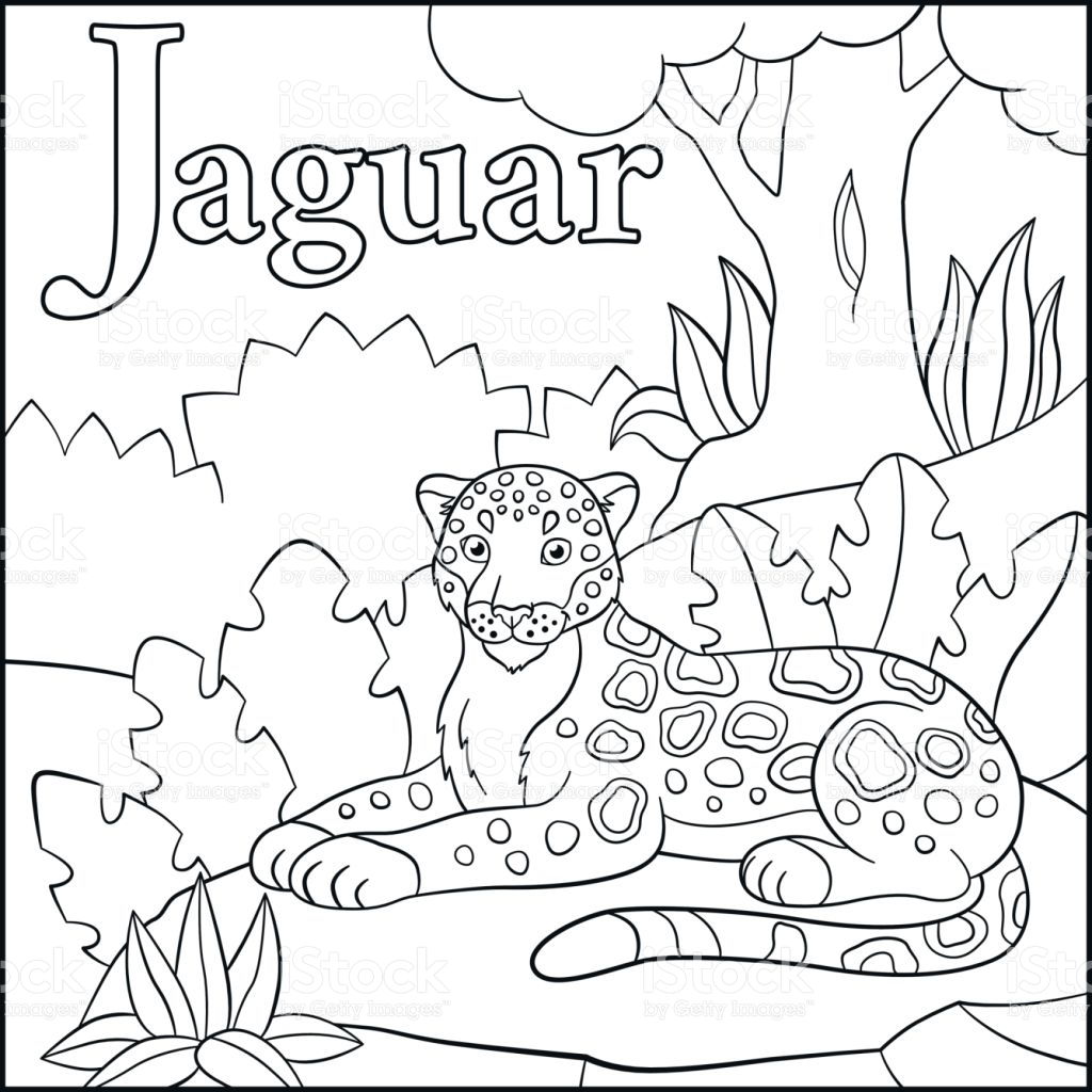 Jaguar Animal Coloring Pages At Getcolorings