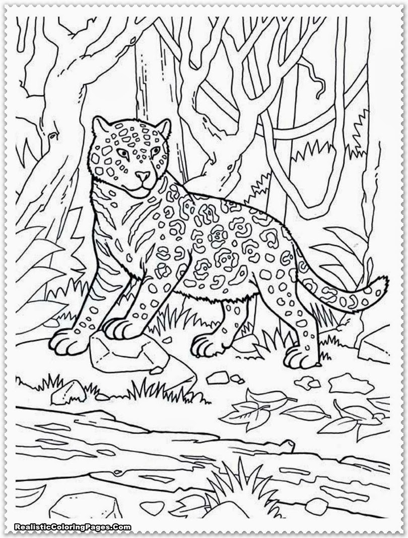 Jungle Scene Coloring Pages at GetColorings.com | Free ... | free printable jungle animals colouring pages