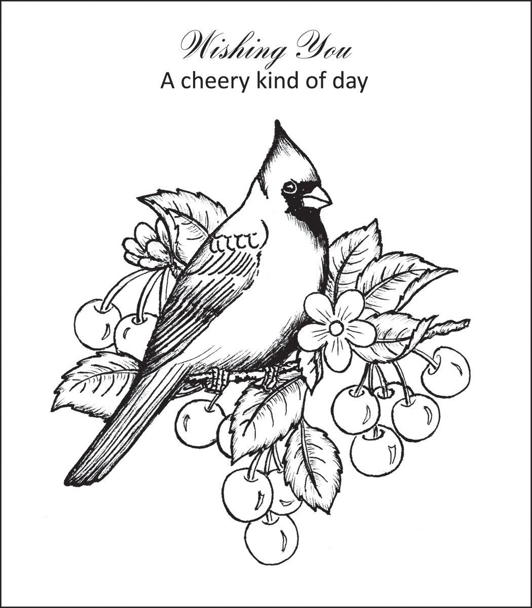 Cardinal coloring page felszamolas com