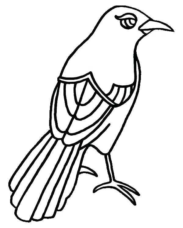 texas coloring pages to print at getcolorings  free