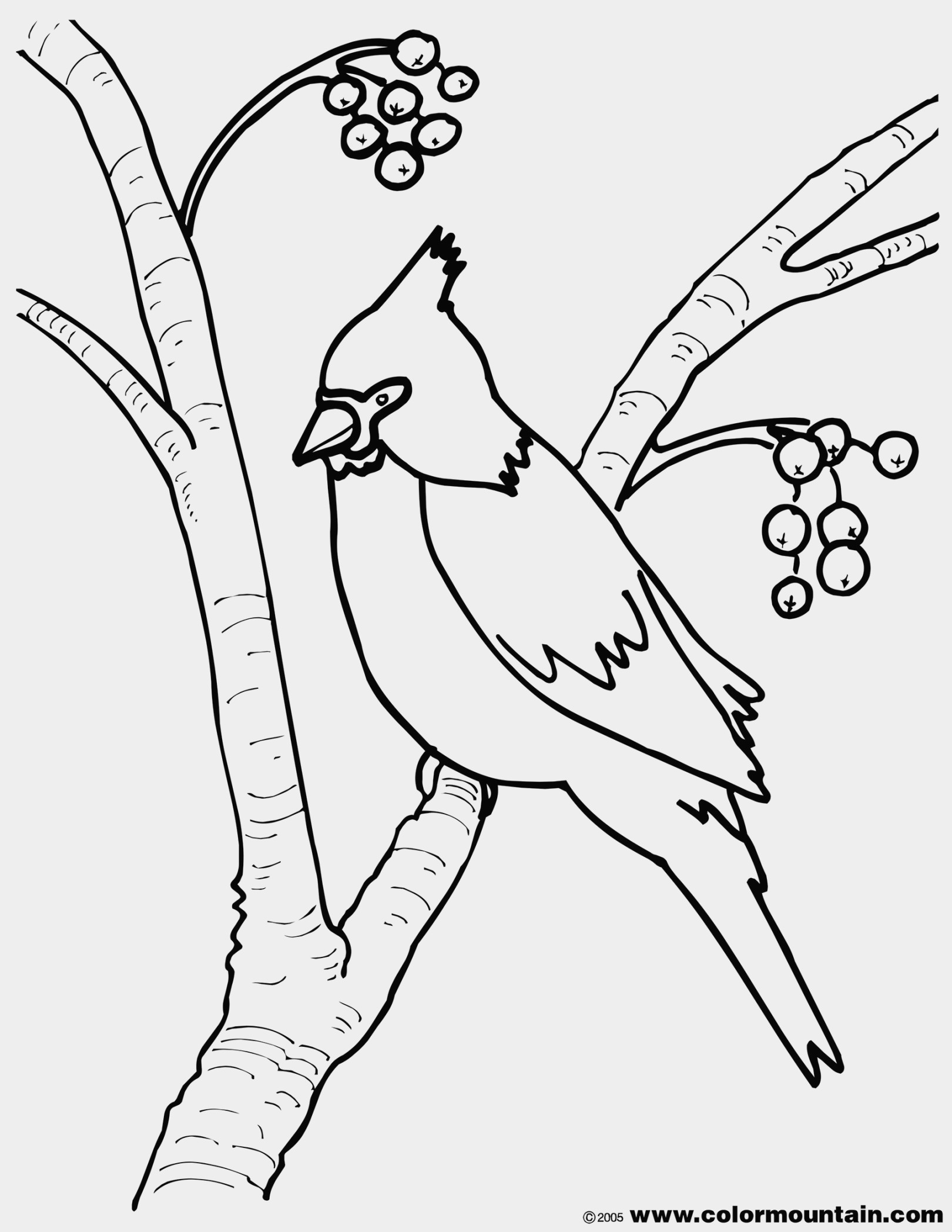 Virginia Coloring Page At Getcolorings