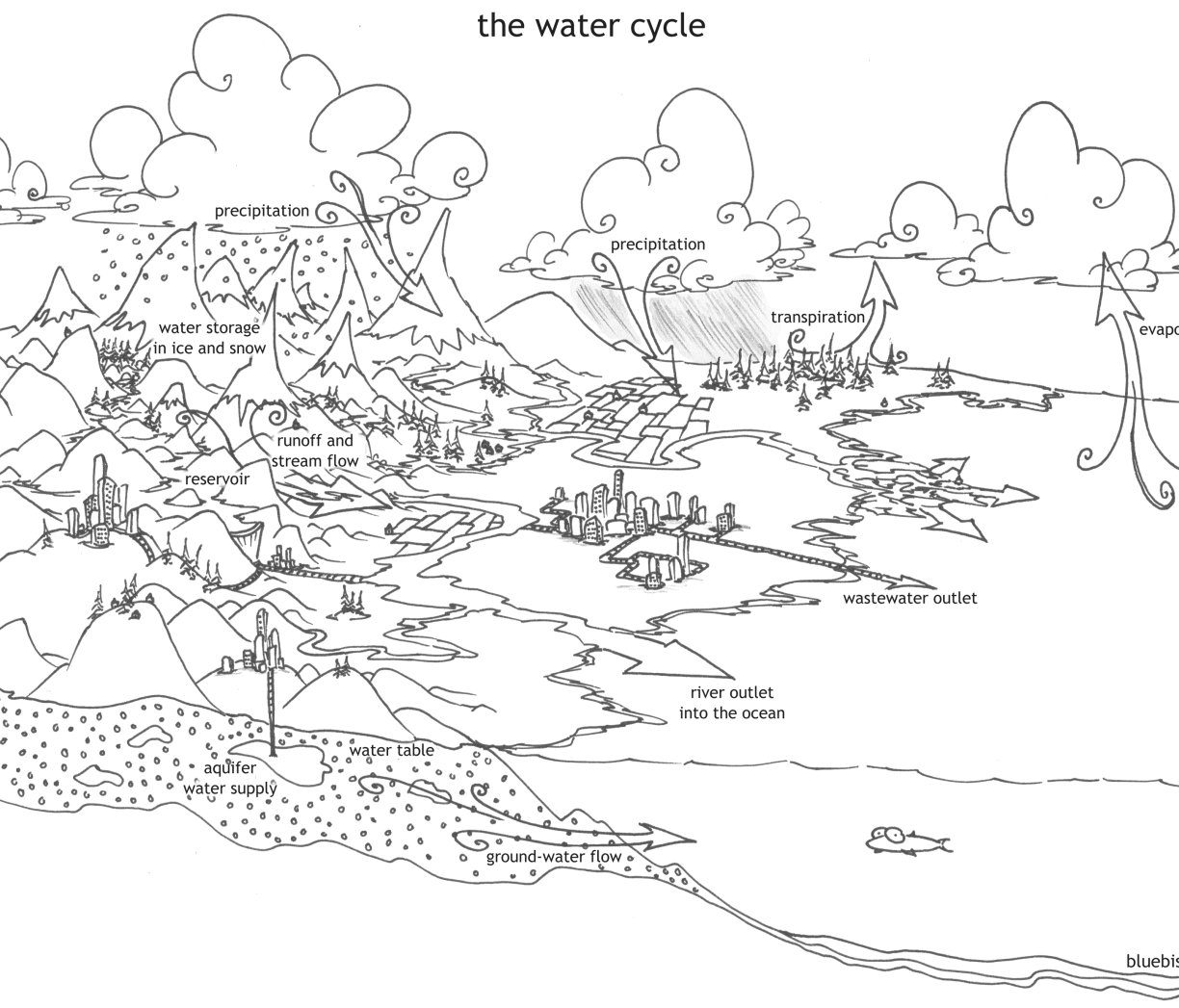 Water Cycle Coloring Page At Getcolorings