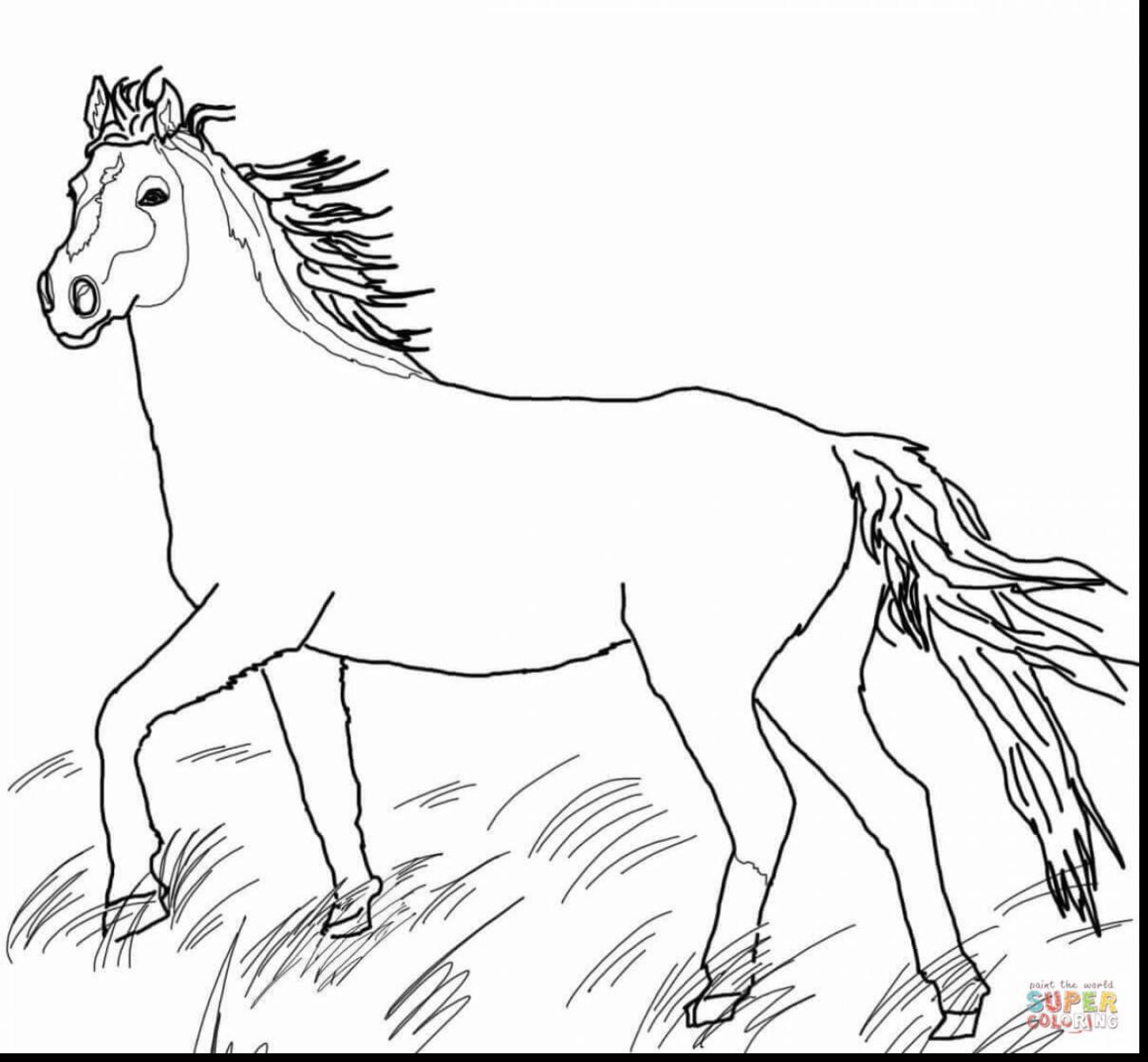 Western Horse Coloring Pages At Getcolorings