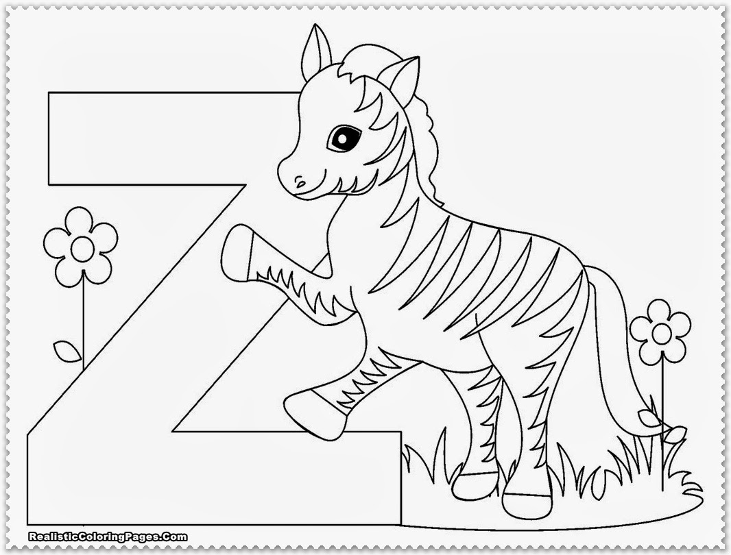 Zoo Coloring Pages At Getcolorings