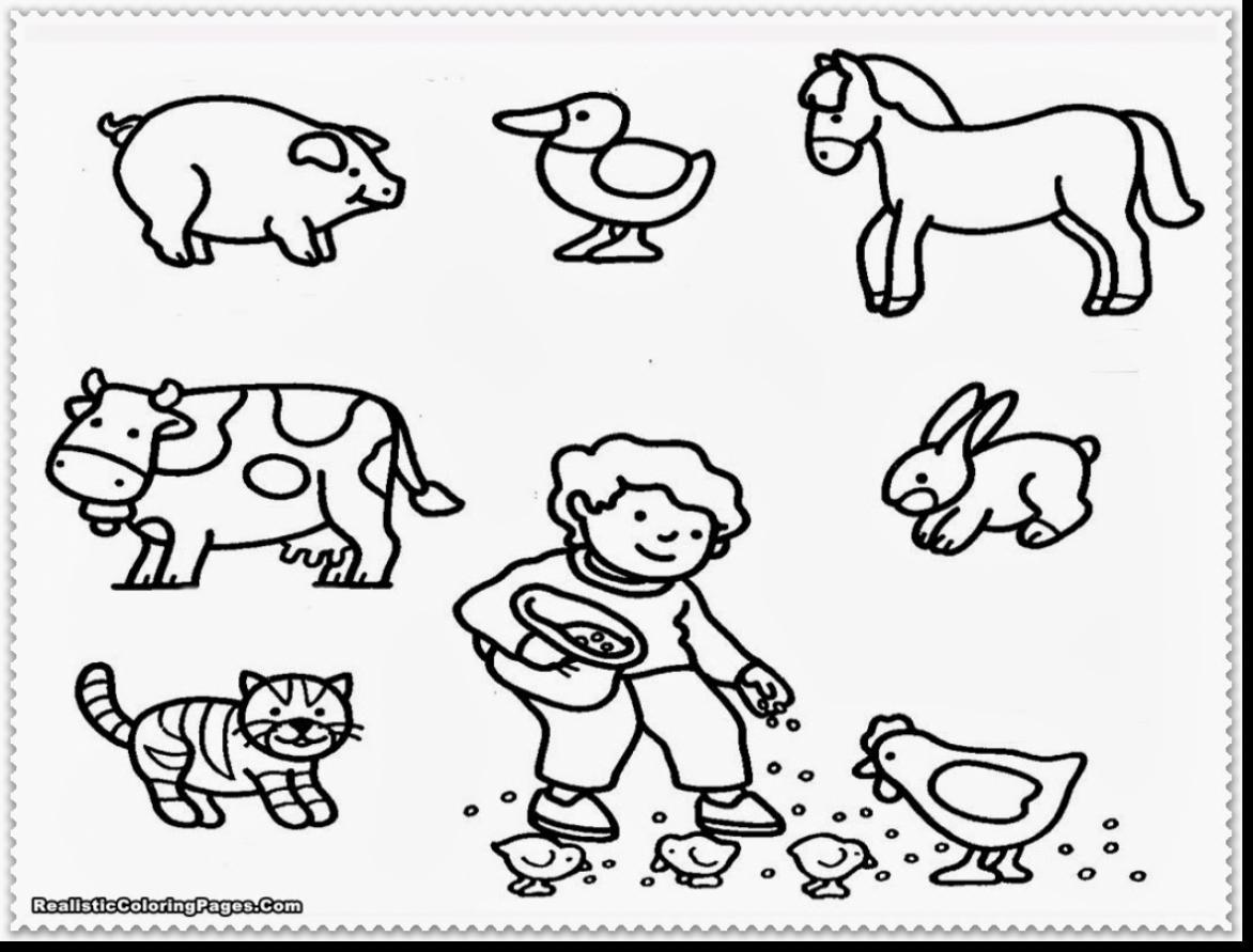 Zoo Coloring Pages For Preschoolers At Getcolorings