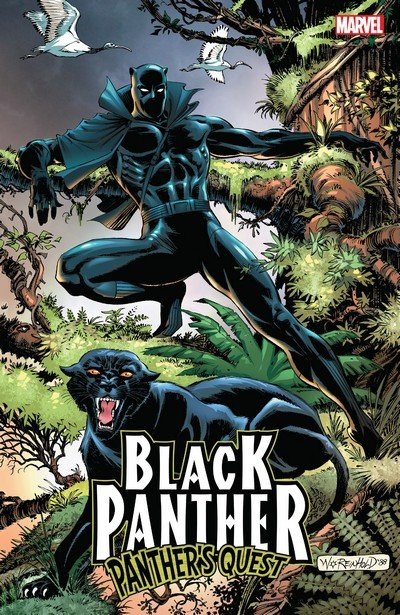 Black Panther Panther's Quest (TPB) (2018)