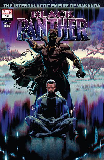 Black Panther #16 (2019)