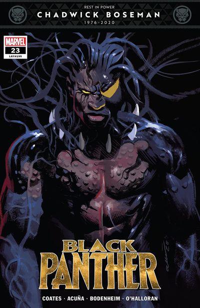 Black Panther #23 (2021)