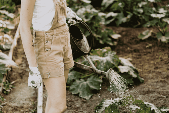 Gardening 101: Ultimate Guide To Growing A Garden For Beginners