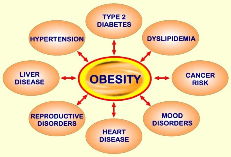 Obesity and Its Negative Effects on Health