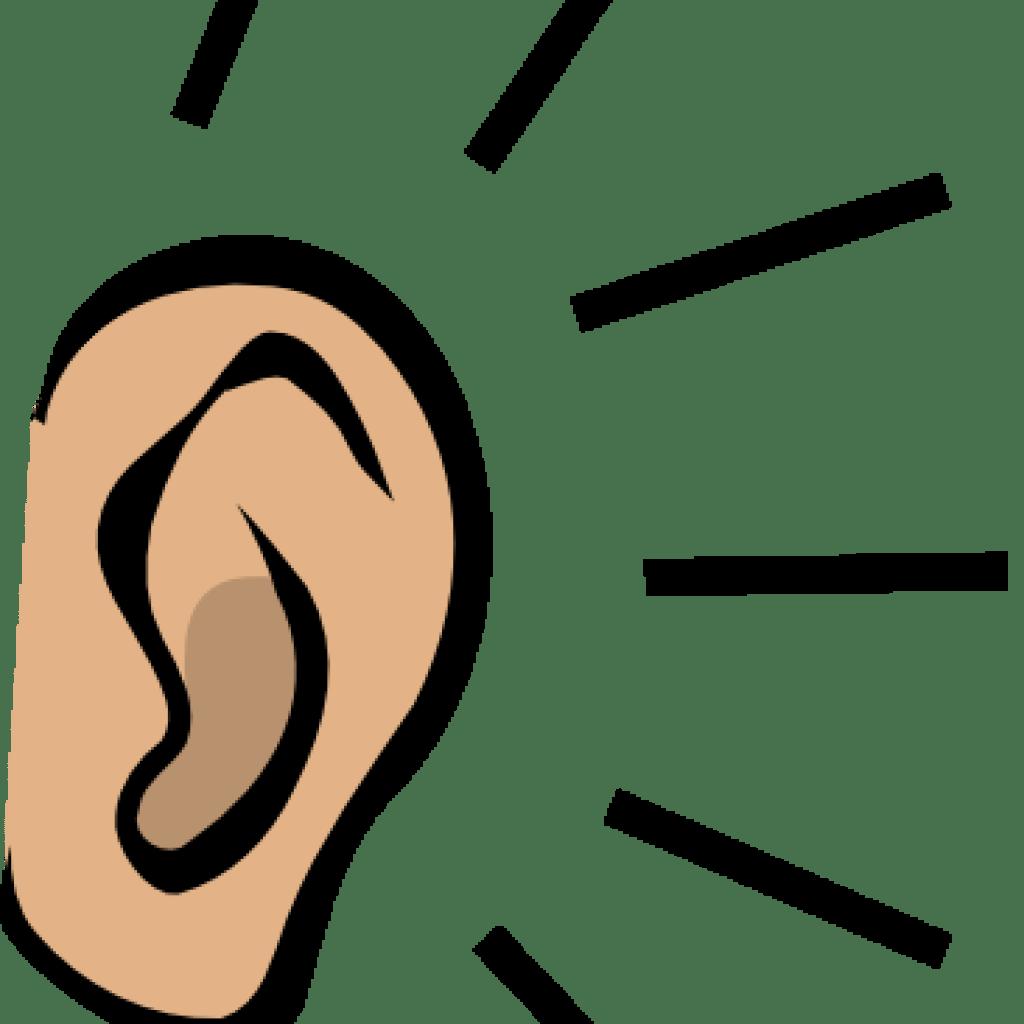 Clipart Ear At Getdrawings