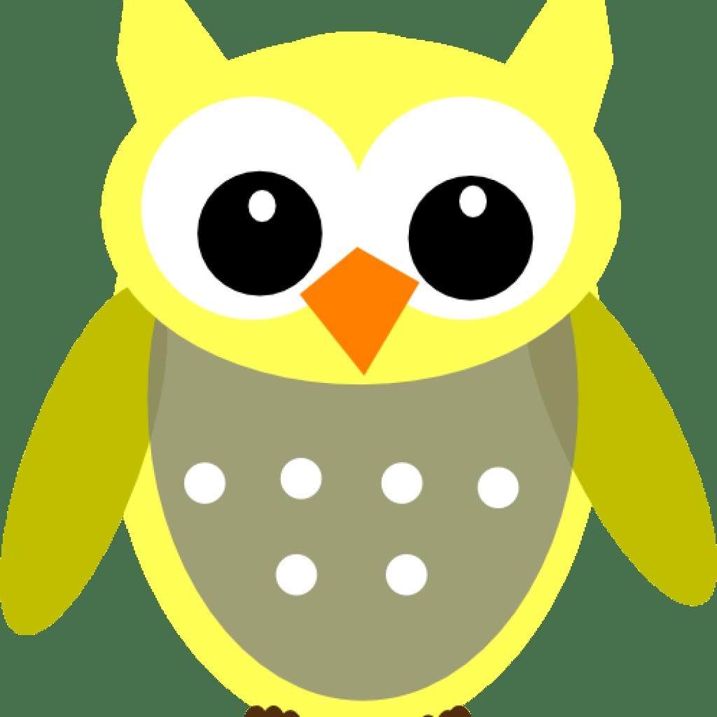 Owl Clipart Cute