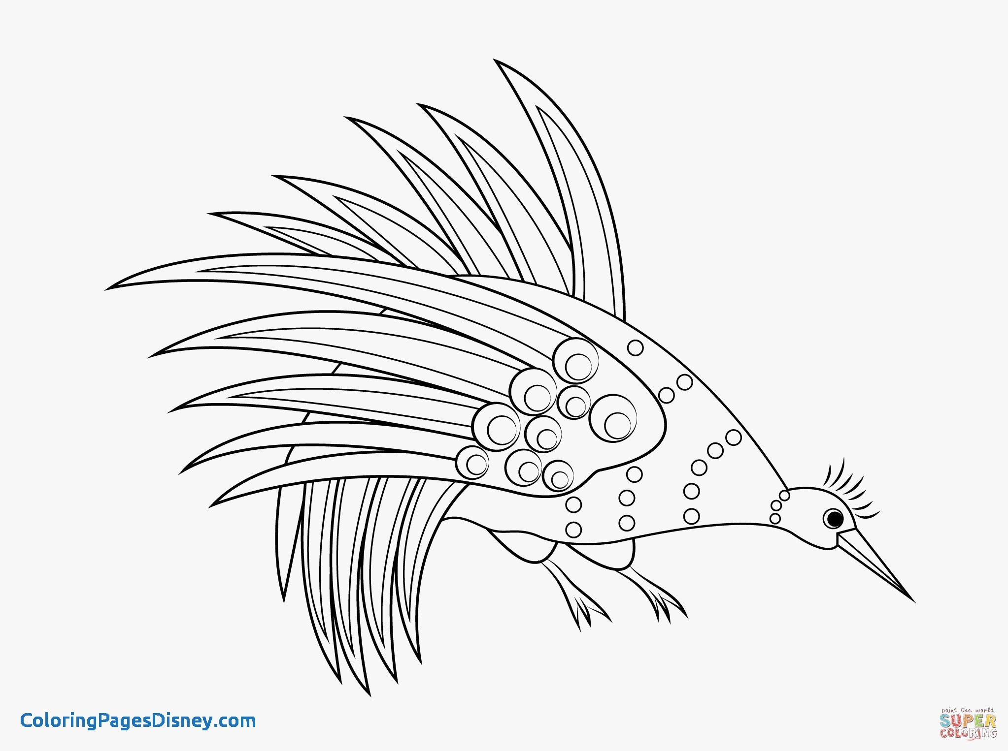 Aboriginal Coloring Pages At Getdrawings