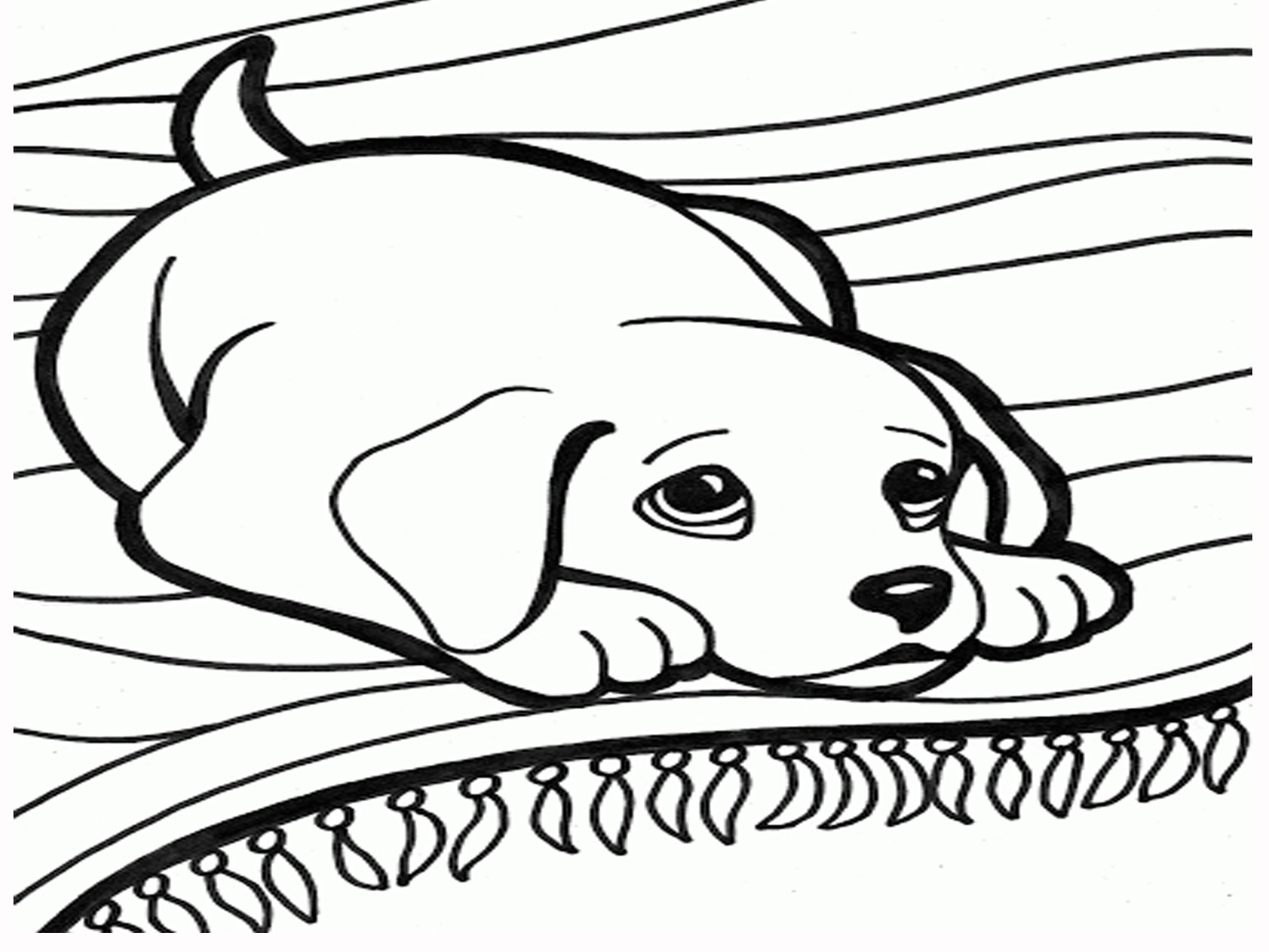 Dog Head Coloring Pages At Getdrawings