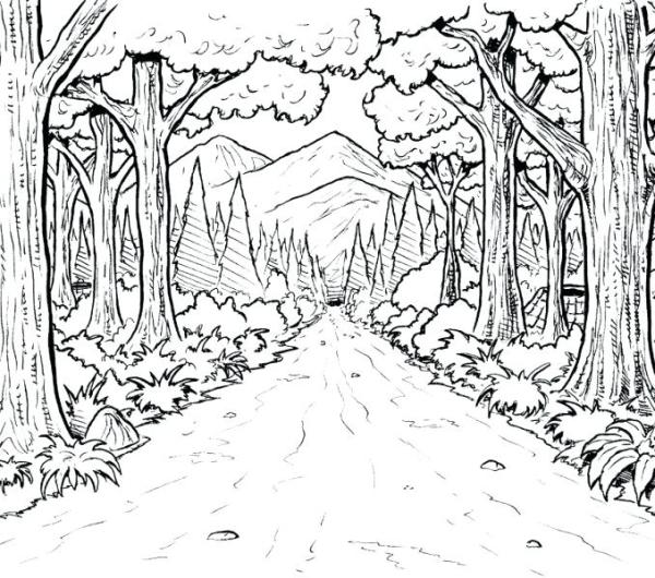 forest coloring page # 34