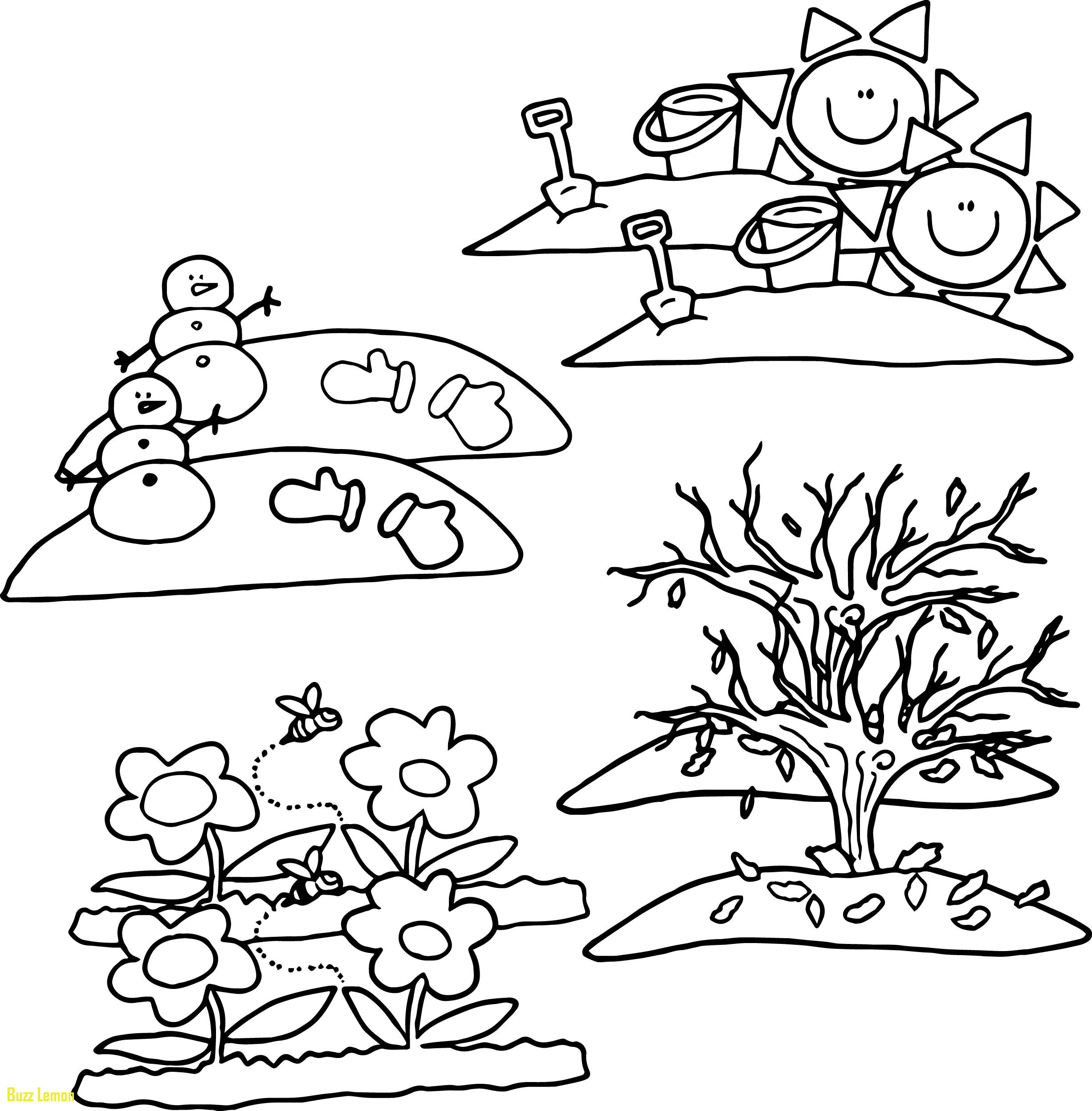 Four Seasons Coloring Page At Getdrawings