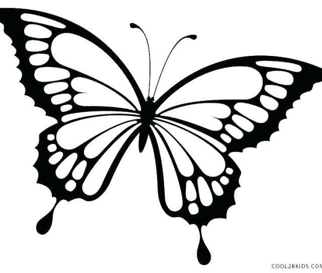 Free Printable Butterfly Coloring Pages At Getdrawings Free Download