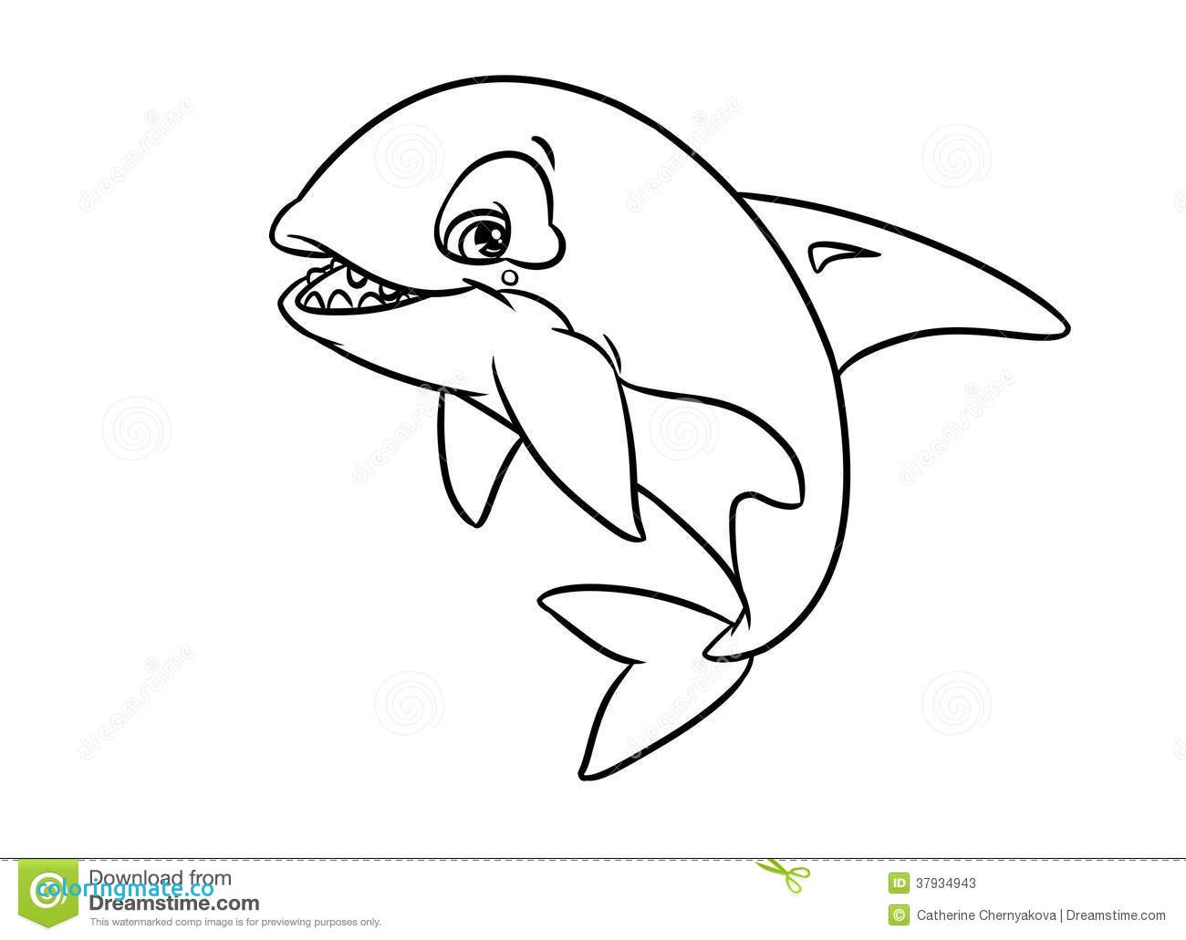 Killer Whale Coloring Pages For Kids At Getdrawings