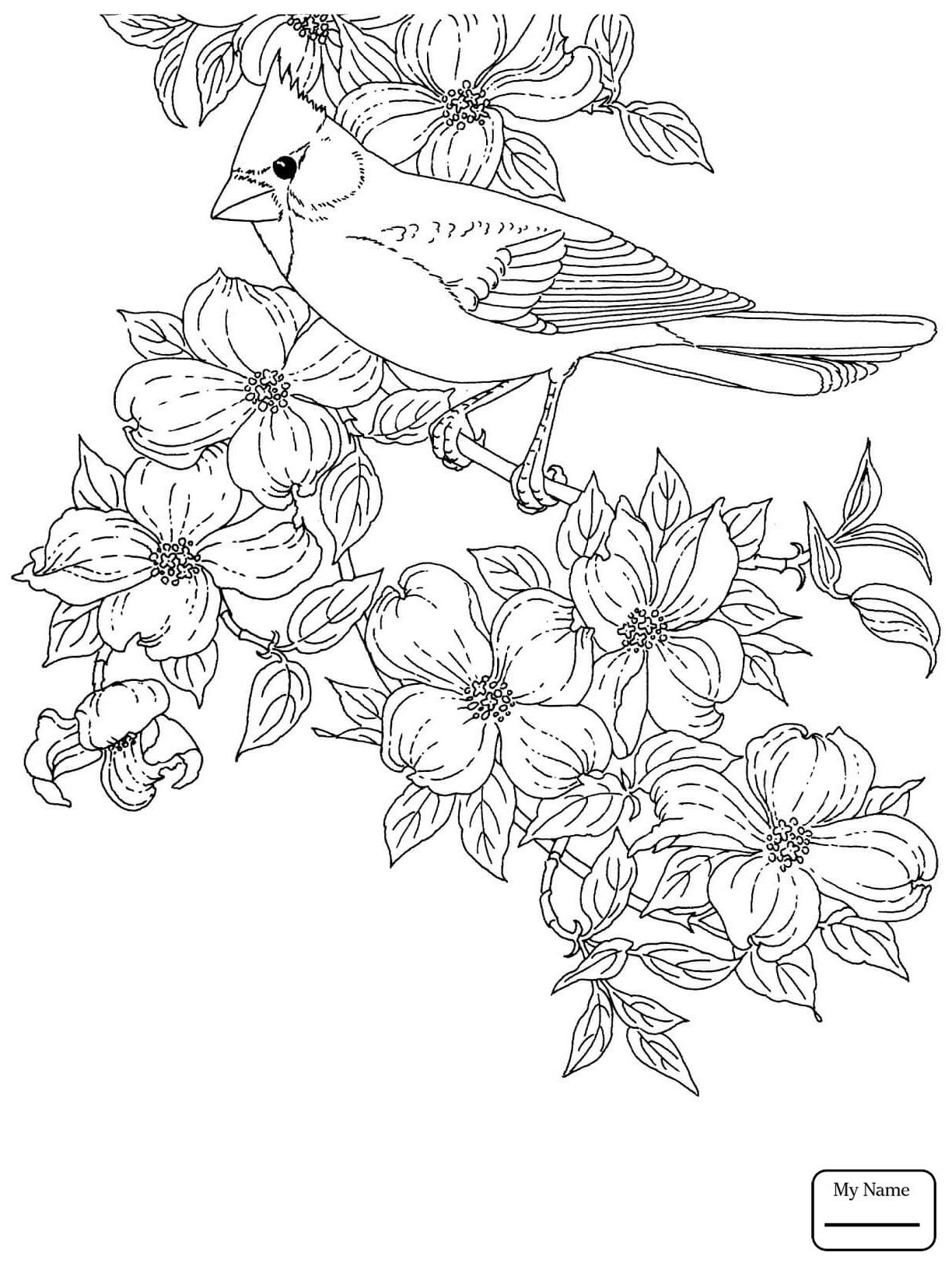 North Carolina State Symbols Coloring Pages At Getdrawings
