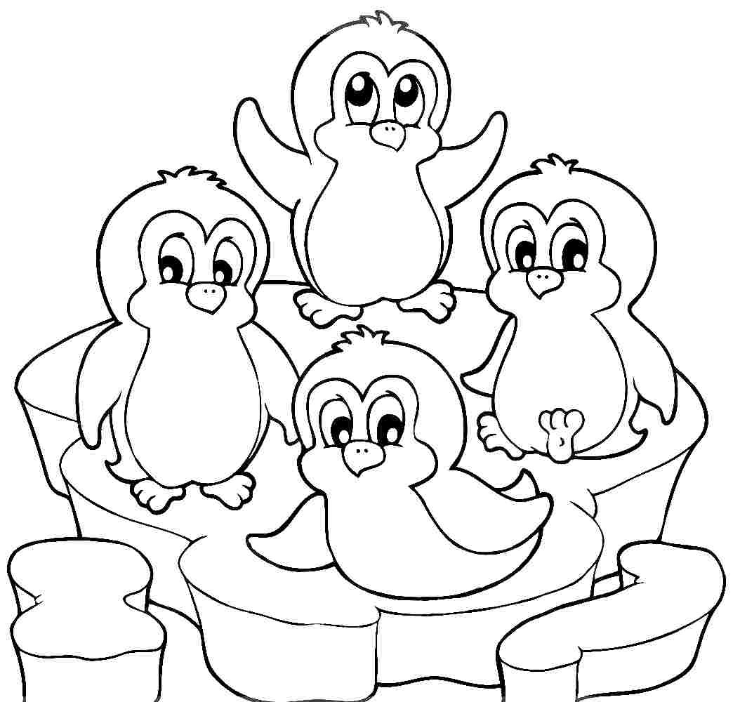 Realistic Penguin Coloring Pages At Getdrawings