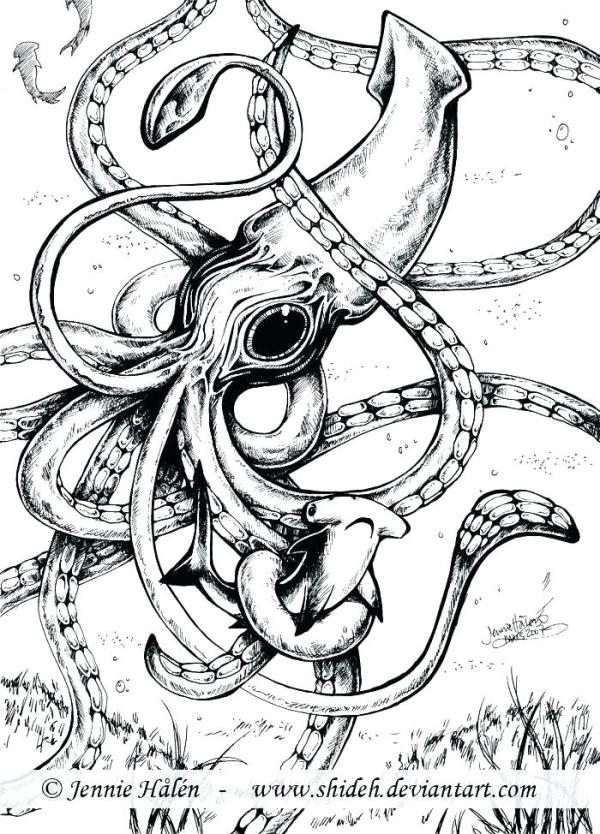 squid coloring pages for kids # 14
