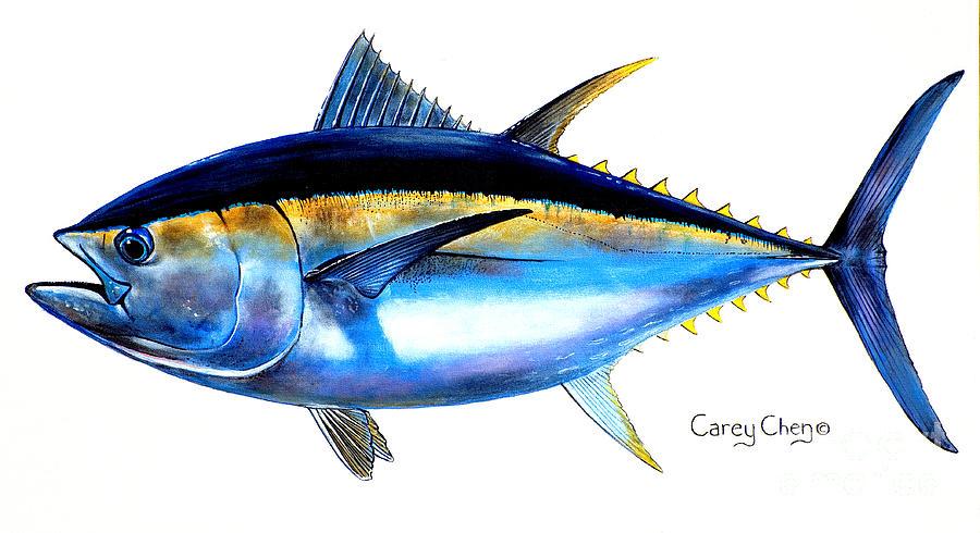Bluefin Tuna Clipart