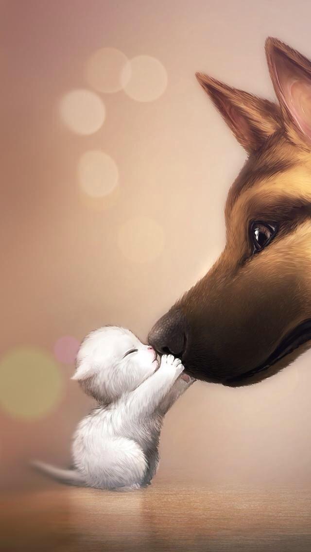 Cute Dog And Cat Wallpaper Pixelstalk