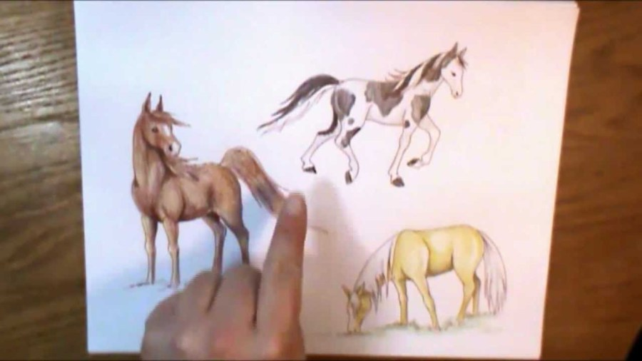Drawing Pictures Of Horses at GetDrawings com   Free for personal     1280x720 How to color a horse