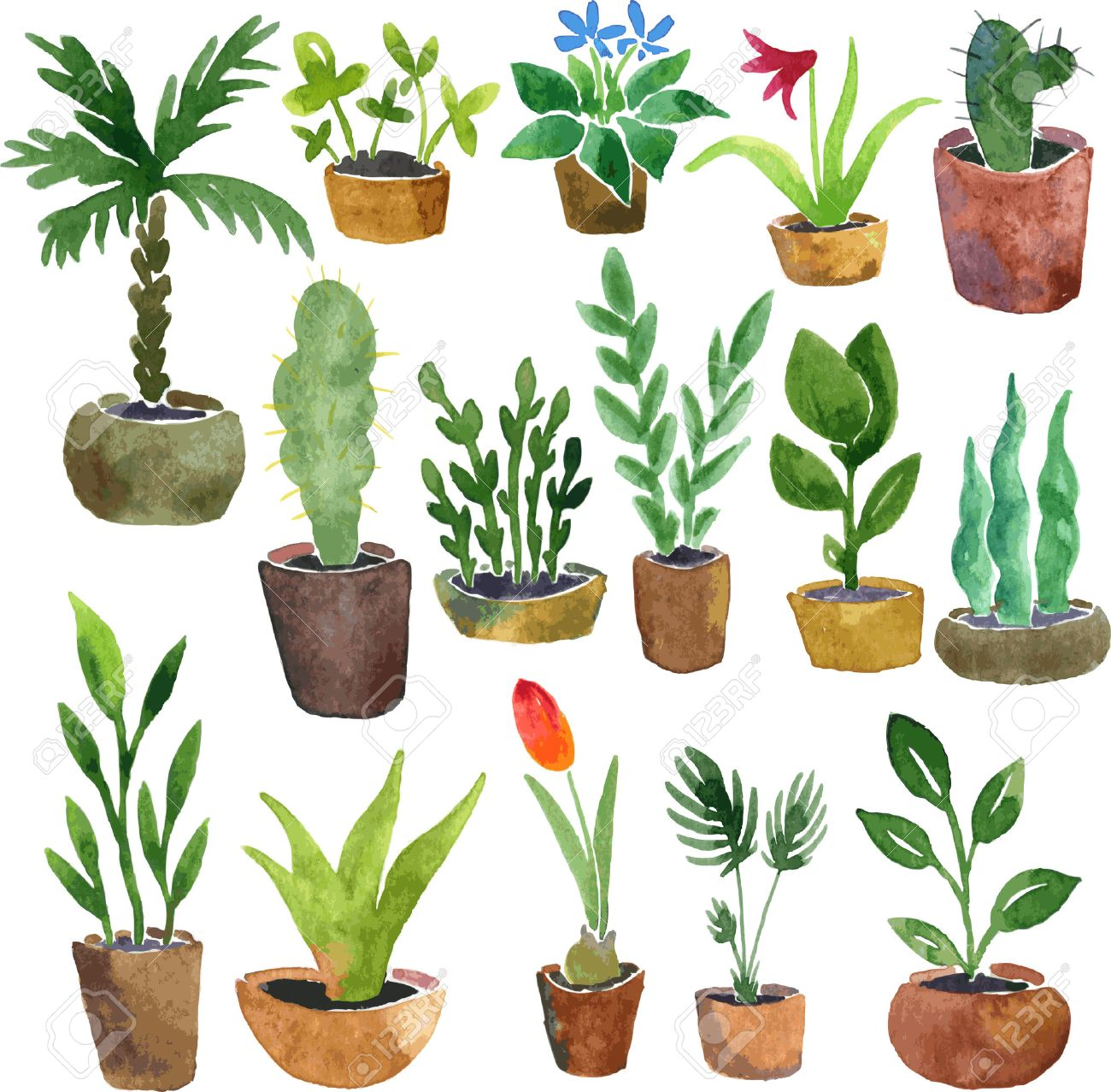House Plant Drawing At Getdrawings