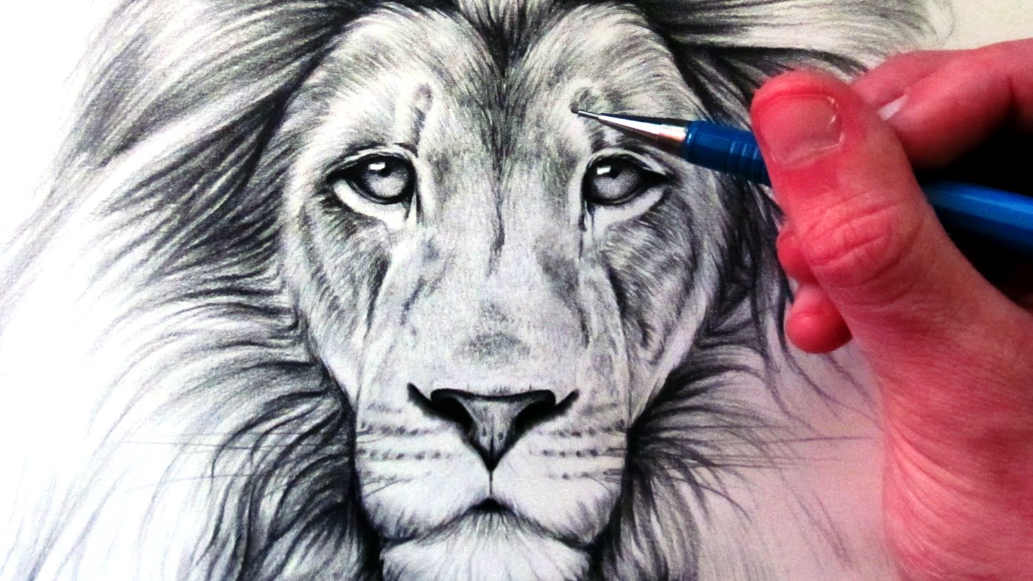 Realistic Lion Drawing At Getdrawings