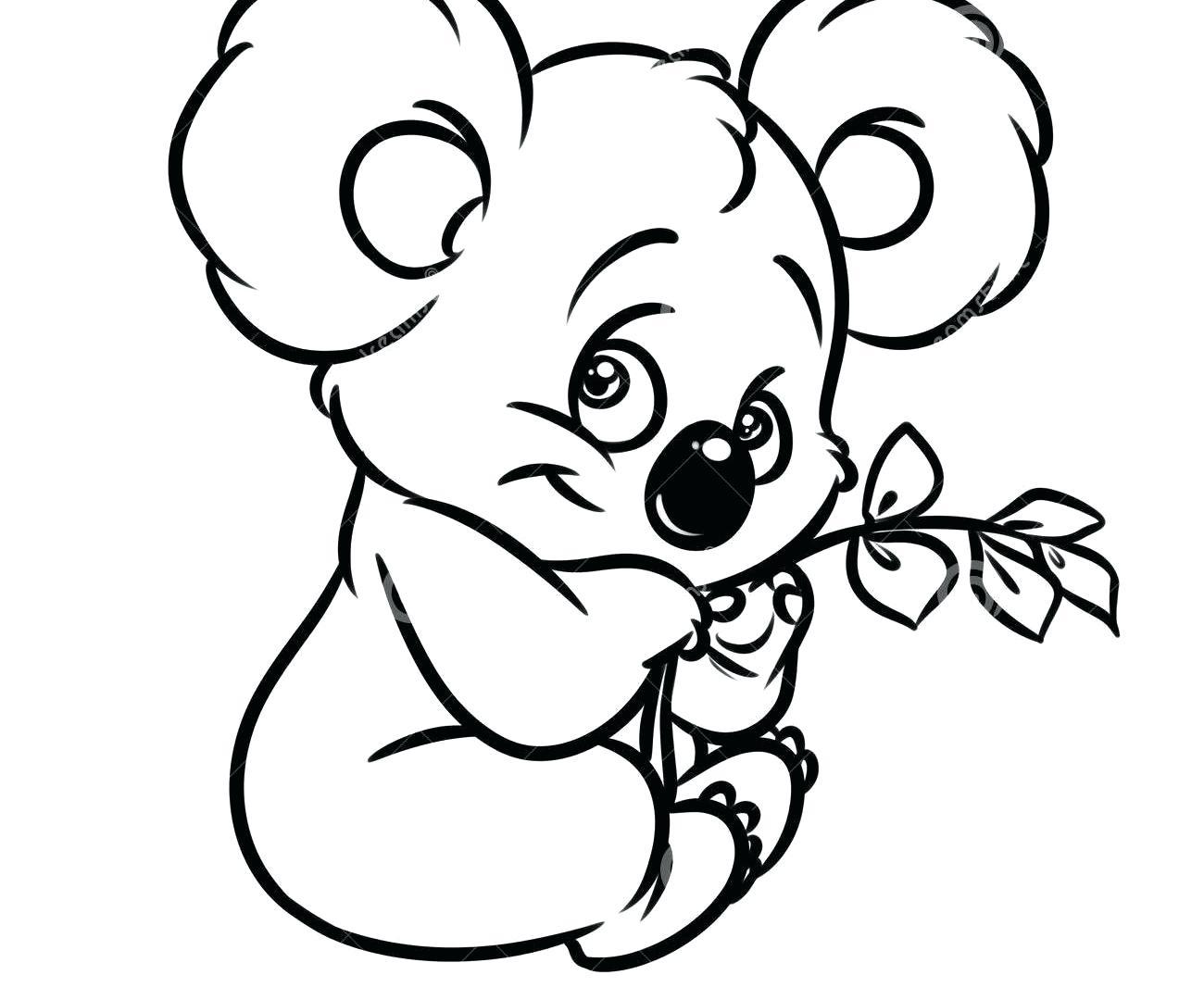 Baby Koala Drawing At Getdrawings