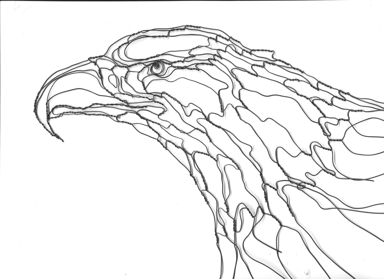 Bald Eagle Head Drawing At Getdrawings