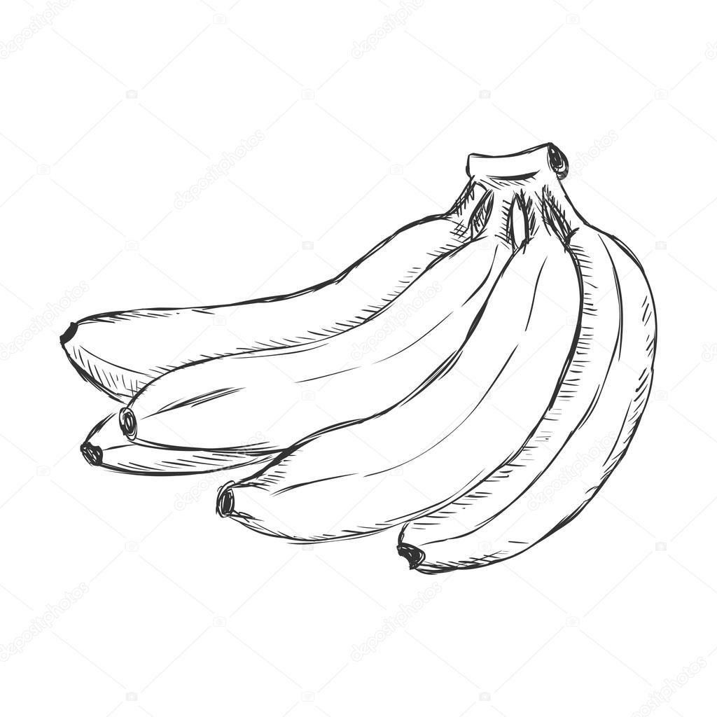 Banana Drawing Images At Getdrawings