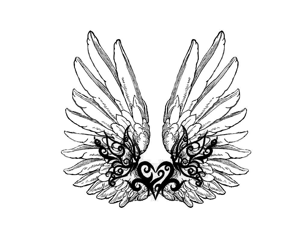 Bat Wings Drawing At Getdrawings