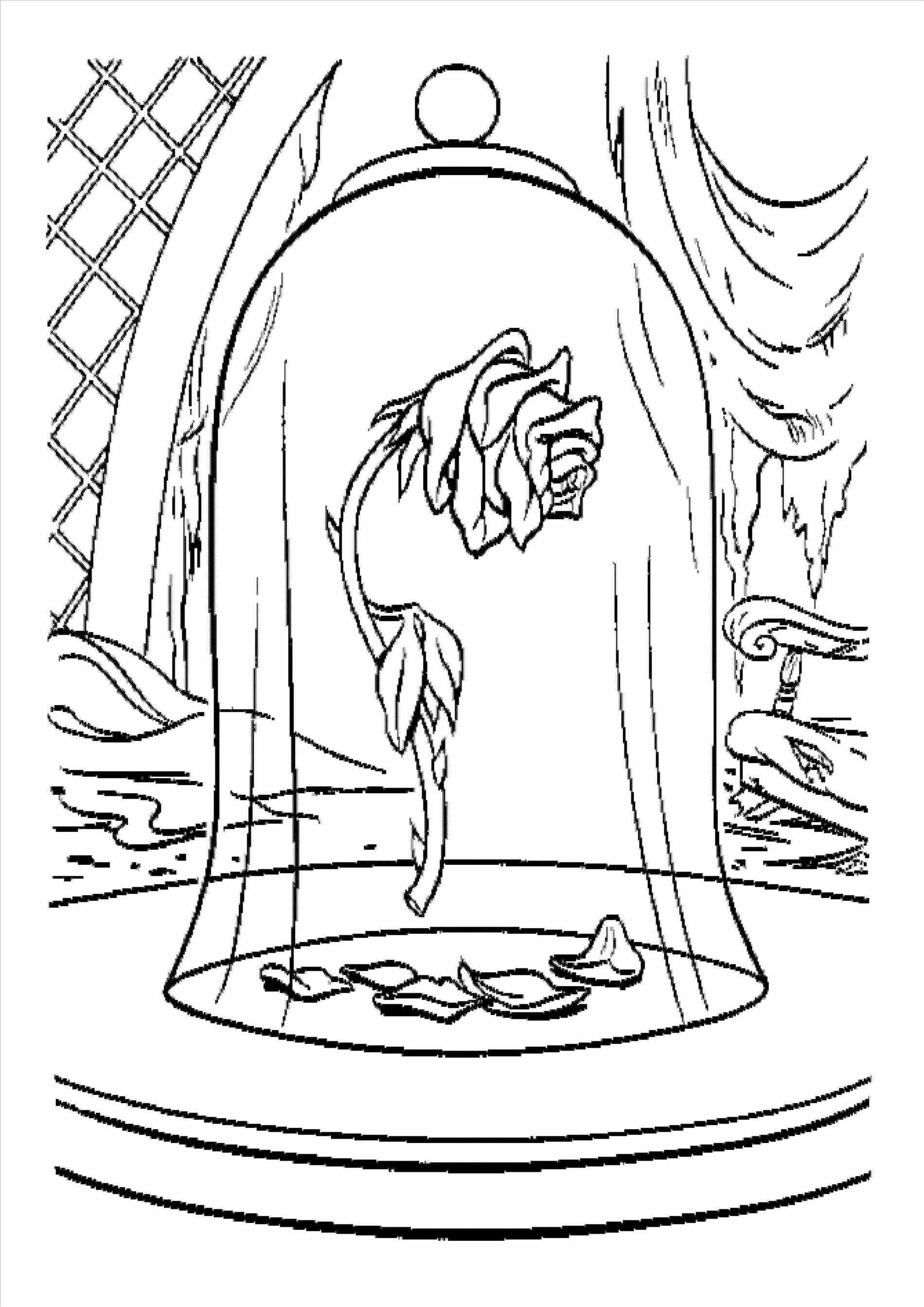 Beauty And The Beast Rose Drawing At Getdrawings