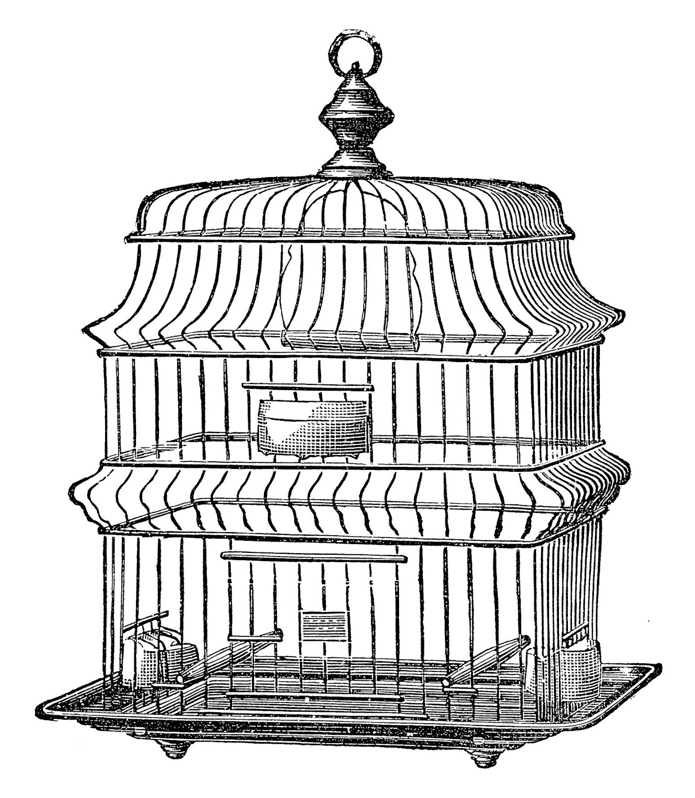 Bird In Cage Clipart At Getdrawings