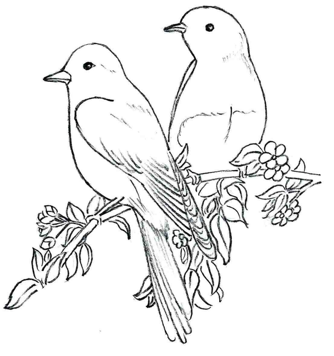 Bird Outline Drawing At Getdrawings