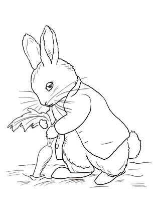 Black And White Rabbit Drawing at GetDrawings | Free download (305 x 430 Pixel)