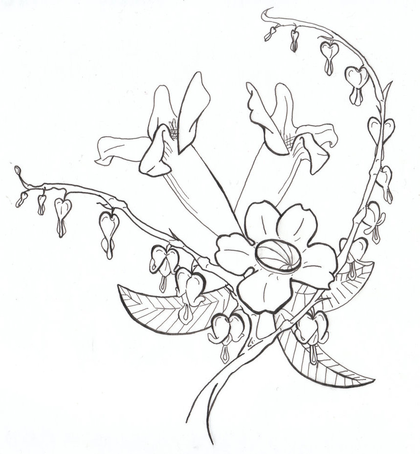 Bleeding heart drawing at getdrawings free for personal use