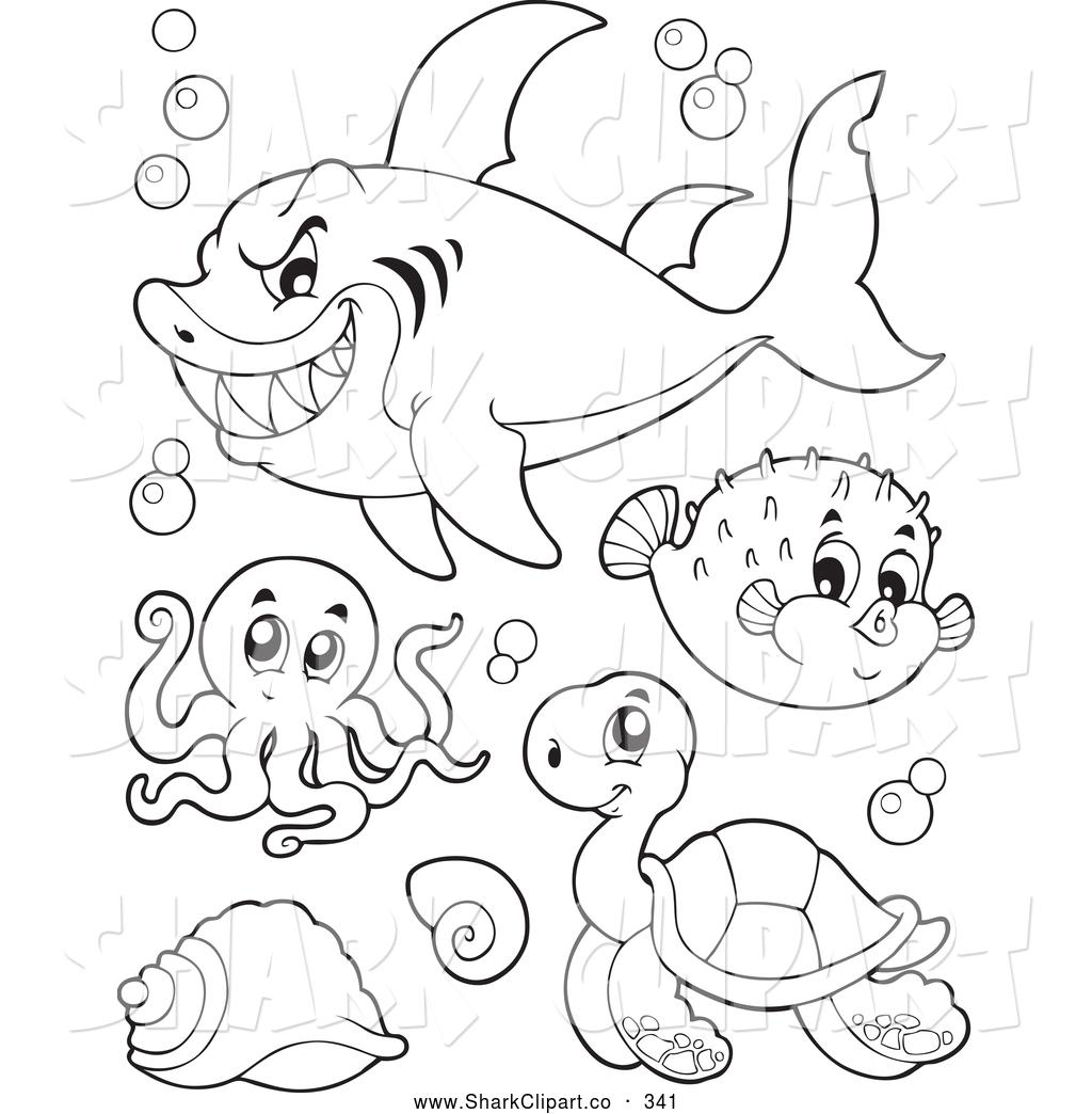 Bull Shark Drawing At Getdrawings
