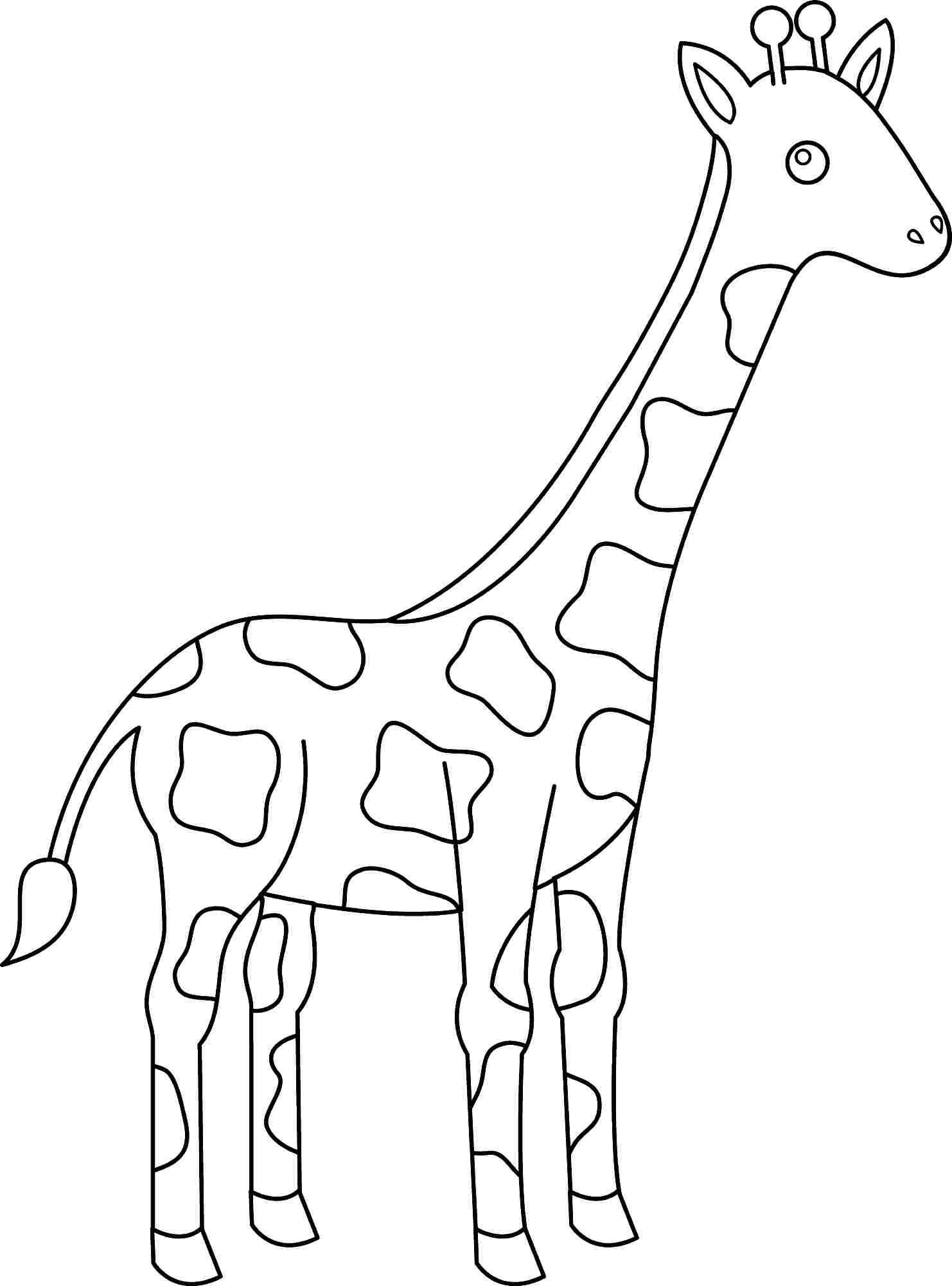 Cartoon Giraffe Drawing At Getdrawings