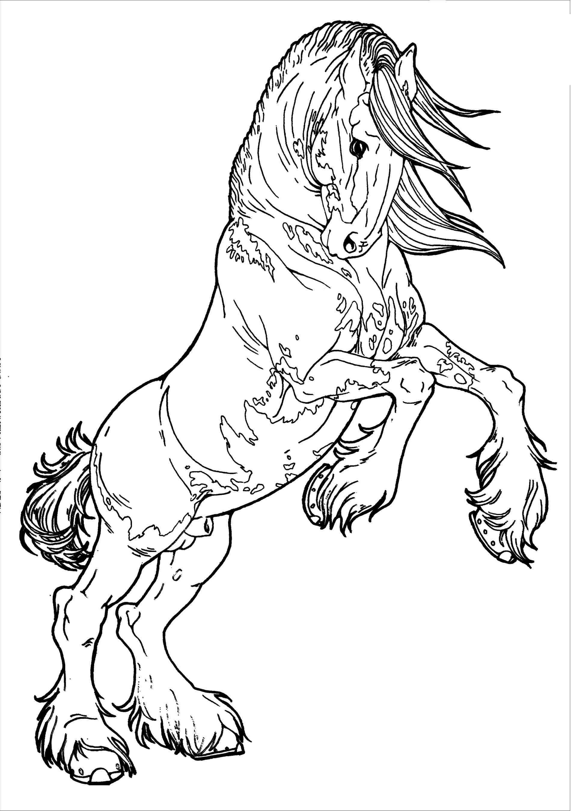 Christmas Horse Drawing At Getdrawings