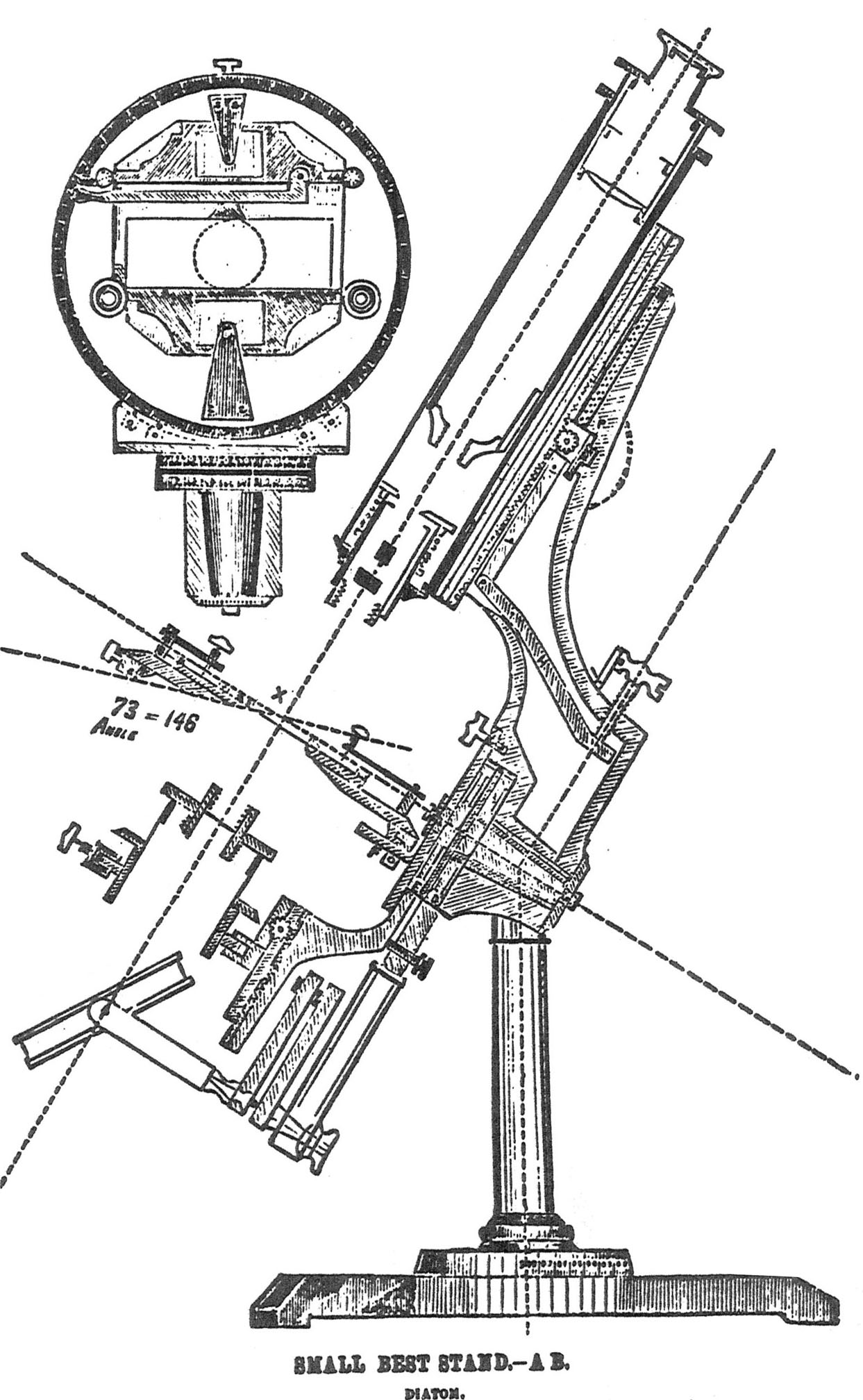 Compound Microscope Drawing At Getdrawings