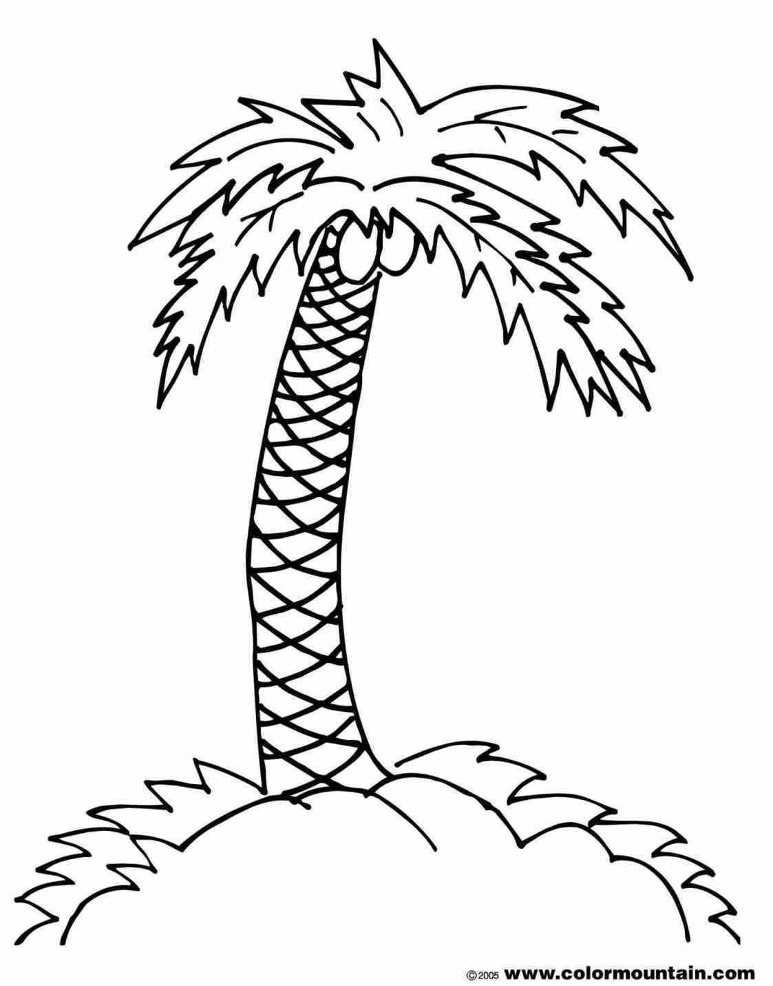 Desert Island Drawing At Getdrawings