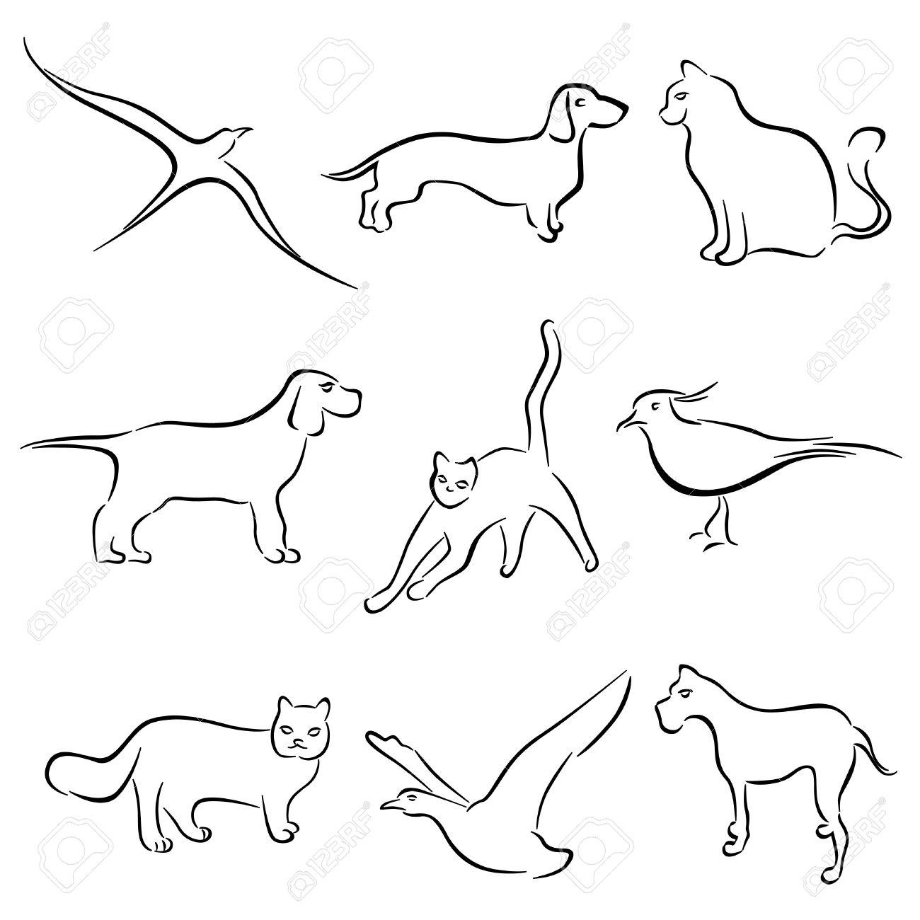 Dog And Cat Drawing At Getdrawings