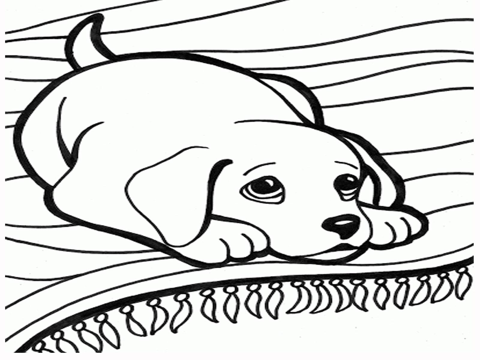 Dog Sled Drawing At Getdrawings