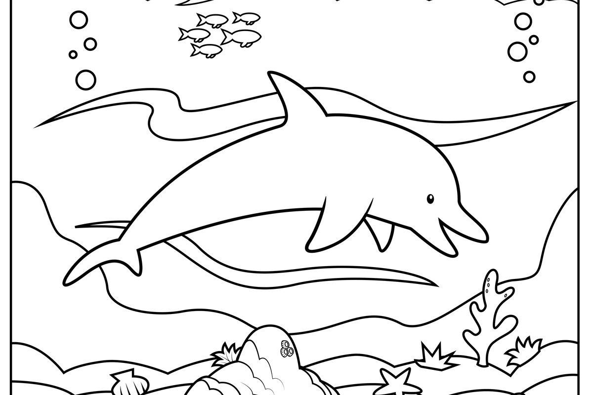 Dolphin Fish Drawing At Getdrawings