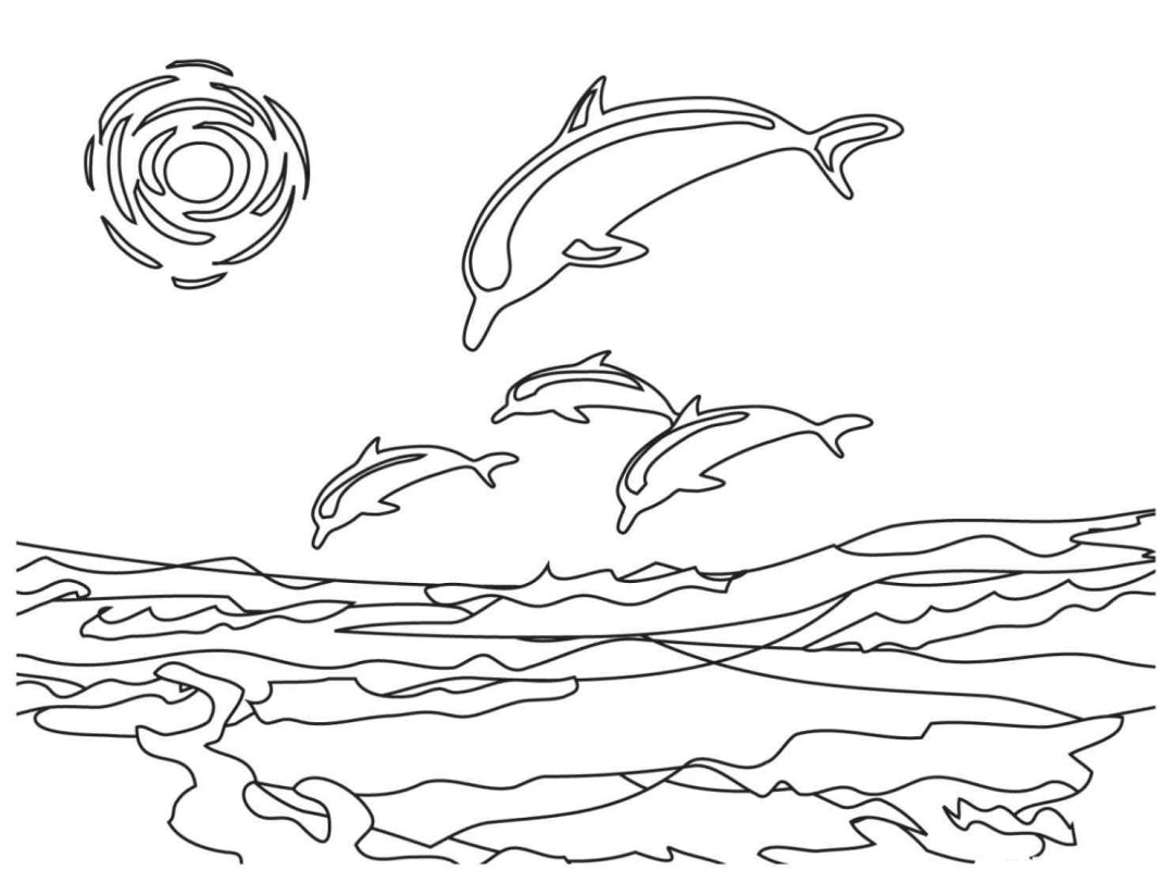 Dolphin Picture Drawing At Getdrawings