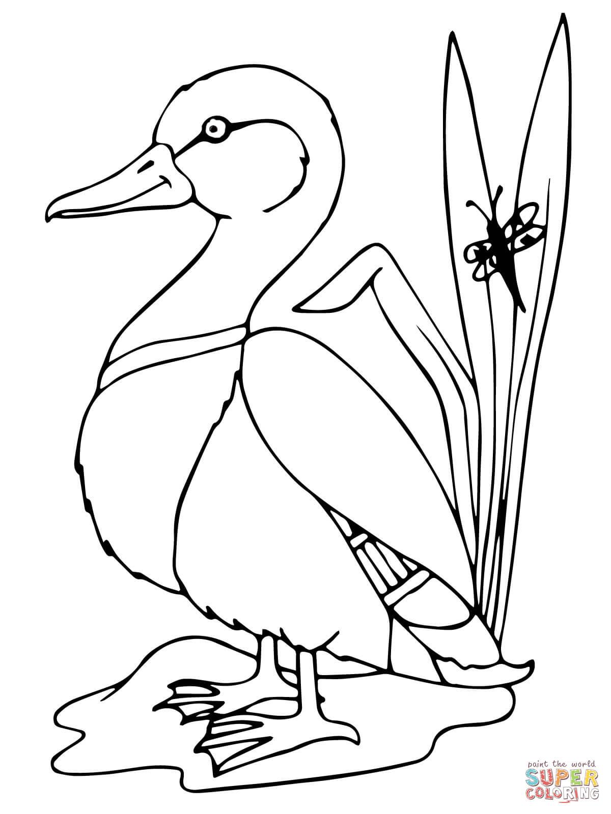 Easy Duck Drawing At Getdrawings