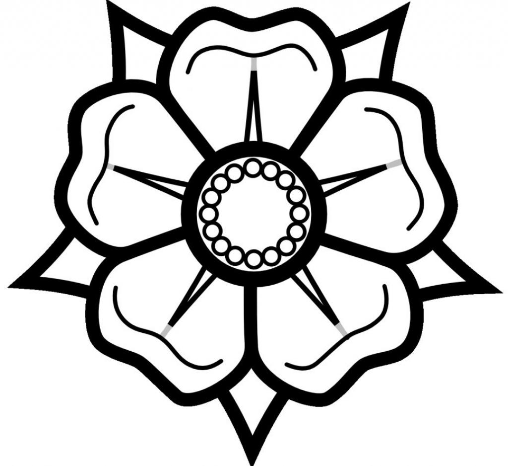 Sketch A Flower Easy Kayaflower Co